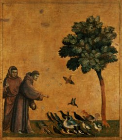 St. Francis and the birds of the air