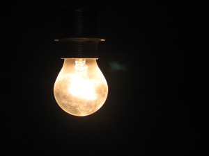 bulb in the dark