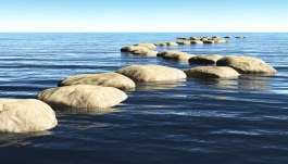 stepping-stones-in-water