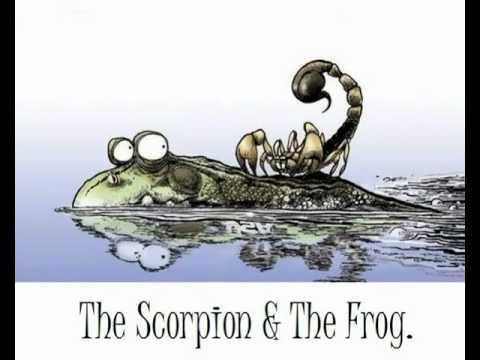 scorp and frog